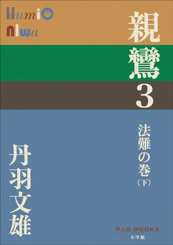 P+D BOOKS 親鸞 3 法難の巻(下)-電子書籍