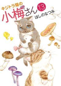 キジトラ猫の小梅さん / 13