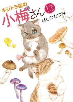 キジトラ猫の小梅さん / 13-電子書籍