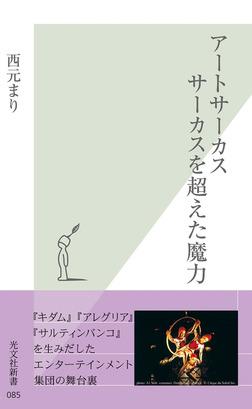 アートサーカス サーカスを越えた魔力-電子書籍