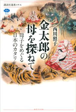 金太郎の母を探ねて 母子をめぐる日本のカタリ-電子書籍