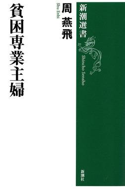 貧困専業主婦(新潮選書)-電子書籍