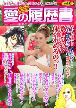 愛の履歴書Vol.13-電子書籍