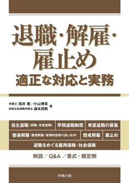 退職・解雇・雇止め―適正な対応と実務―-電子書籍