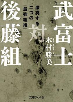 武富士対後藤組-電子書籍