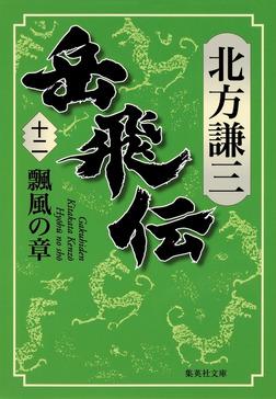 岳飛伝 十二 瓢風の章-電子書籍