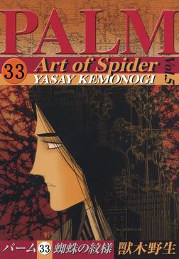 パーム (33) 蜘蛛の紋様 V-電子書籍