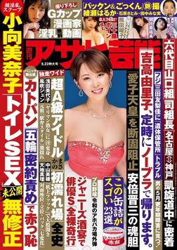週刊アサヒ芸能 2019年05月23日号-電子書籍