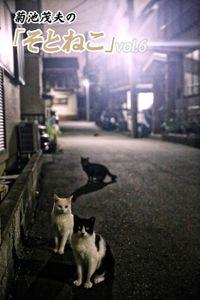 菊池茂夫の「そとねこ」vol.6