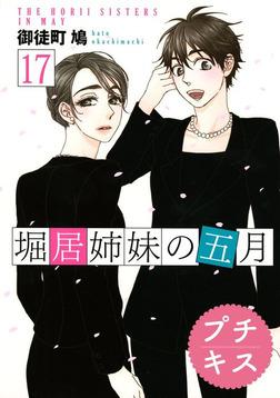 堀居姉妹の五月 プチキス(17)-電子書籍