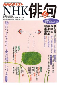 NHK 俳句 2019年6月号-電子書籍