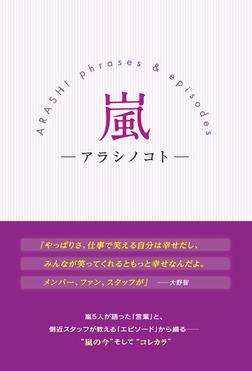 嵐 -アラシノコト--電子書籍