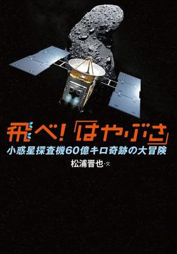 飛べ!「はやぶさ」 小惑星探査機60億キロ奇跡の大冒険-電子書籍
