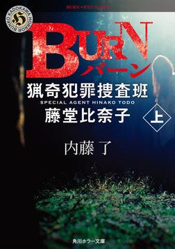 BURN 上 猟奇犯罪捜査班・藤堂比奈子-電子書籍