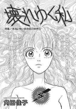 本当にあった主婦の黒い話vol.2~壊れゆく私~-電子書籍