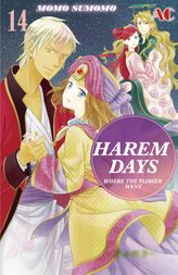 HAREM DAYS THE SEVEN-STARRED COUNTRY, Volume 14