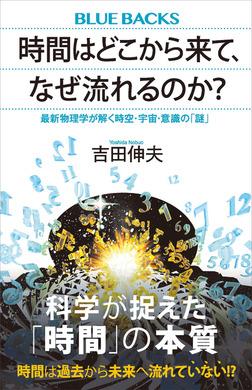 時間はどこから来て、なぜ流れるのか? 最新物理学が解く時空・宇宙・意識の「謎」-電子書籍