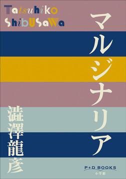 P+D BOOKS マルジナリア-電子書籍