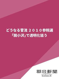 どうなる菅流 2010参院選 「脱小沢」で透明化狙う-電子書籍
