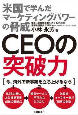 CEOの突破力 米国で学んだマーケティングパワーの脅威-電子書籍