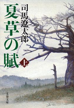 夏草の賦(上)-電子書籍