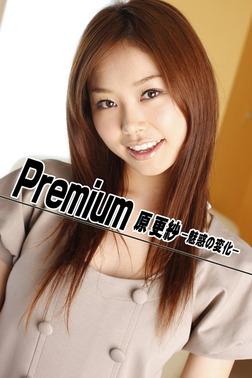 Premium 原更紗 -魅惑の変化--電子書籍