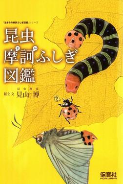 昆虫摩訶ふしぎ図鑑-電子書籍