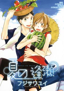 夏の逢瀬-電子書籍