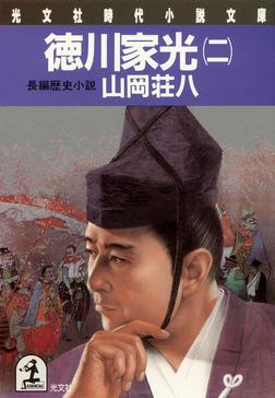 徳川家光(二)-電子書籍