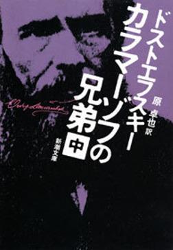 カラマーゾフの兄弟(中)-電子書籍