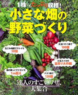 1株でもたっぷり収穫! 小さな畑の野菜づくり-電子書籍