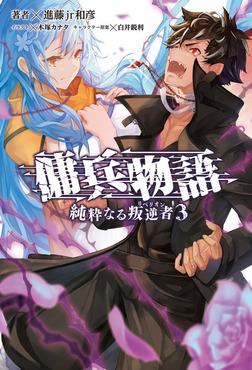 傭兵物語 ~純粋なる叛逆者~3(サーガフォレスト)-電子書籍