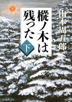 樅ノ木は残った(下)-電子書籍