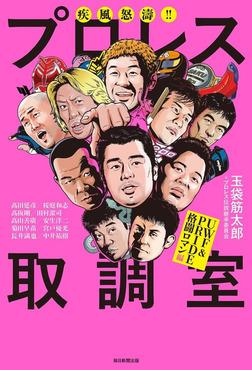 疾風怒涛!! プロレス取調室(毎日新聞出版) UWF&PRIDE格闘ロマン編-電子書籍