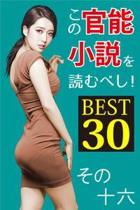 この官能小説を読むべし! BEST30 その十六