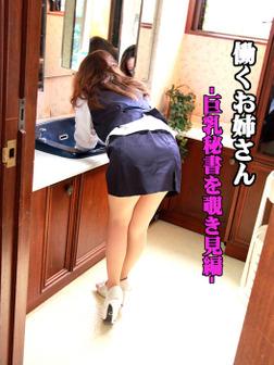 働くお姉さん「巨乳秘書を覗き見編」-電子書籍