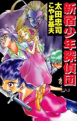 新宿少年探偵団-電子書籍