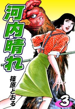 河内晴れ(3)-電子書籍