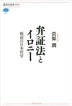 弁証法とイロニー 戦前の日本哲学-電子書籍