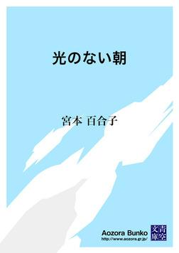 光のない朝-電子書籍
