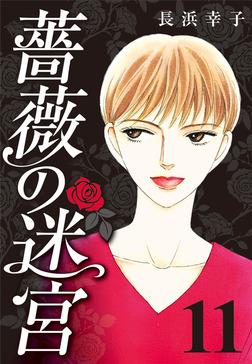薔薇の迷宮 ~義兄の死、姉の失踪、妹が探し求める真実~ (11)-電子書籍