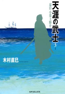 天涯の武士 3巻-電子書籍