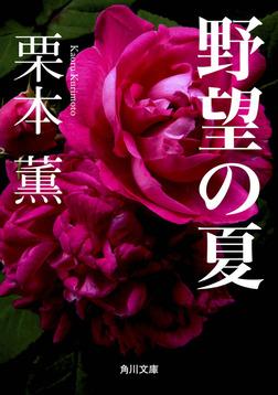 野望の夏-電子書籍