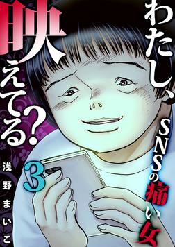 #SNSのネットストーカー女(3)-電子書籍