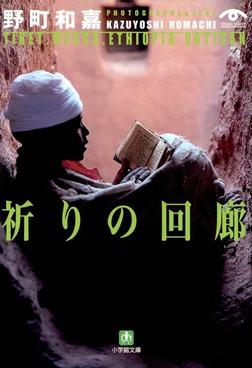 祈りの回廊(小学館文庫)-電子書籍