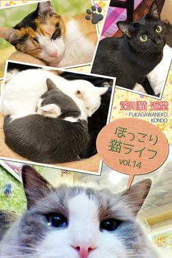 ほっこり猫ライフ vol.14-電子書籍