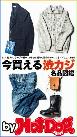バイホットドッグプレス 今買える渋カジ名品図鑑 2017年10/13号-電子書籍