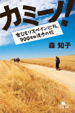 カミーノ! 女ひとりスペイン巡礼、900キロ徒歩の旅-電子書籍