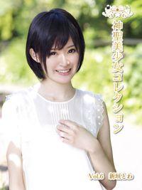 神聖美少女コレクション Vol.6 新垣とわ