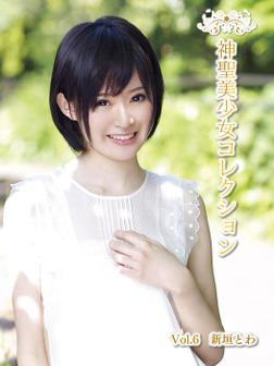 神聖美少女コレクション Vol.6 新垣とわ-電子書籍
